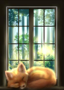 fox on window