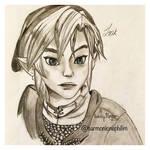 Twilight Princess: Link