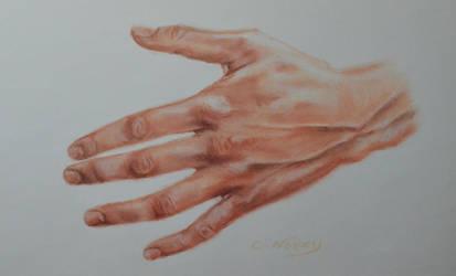 Tom's Hand 48 'Acting'