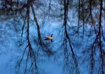 Blue Goose Lake