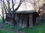Split Cedar Shed