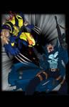 Wolverine VS Punisher