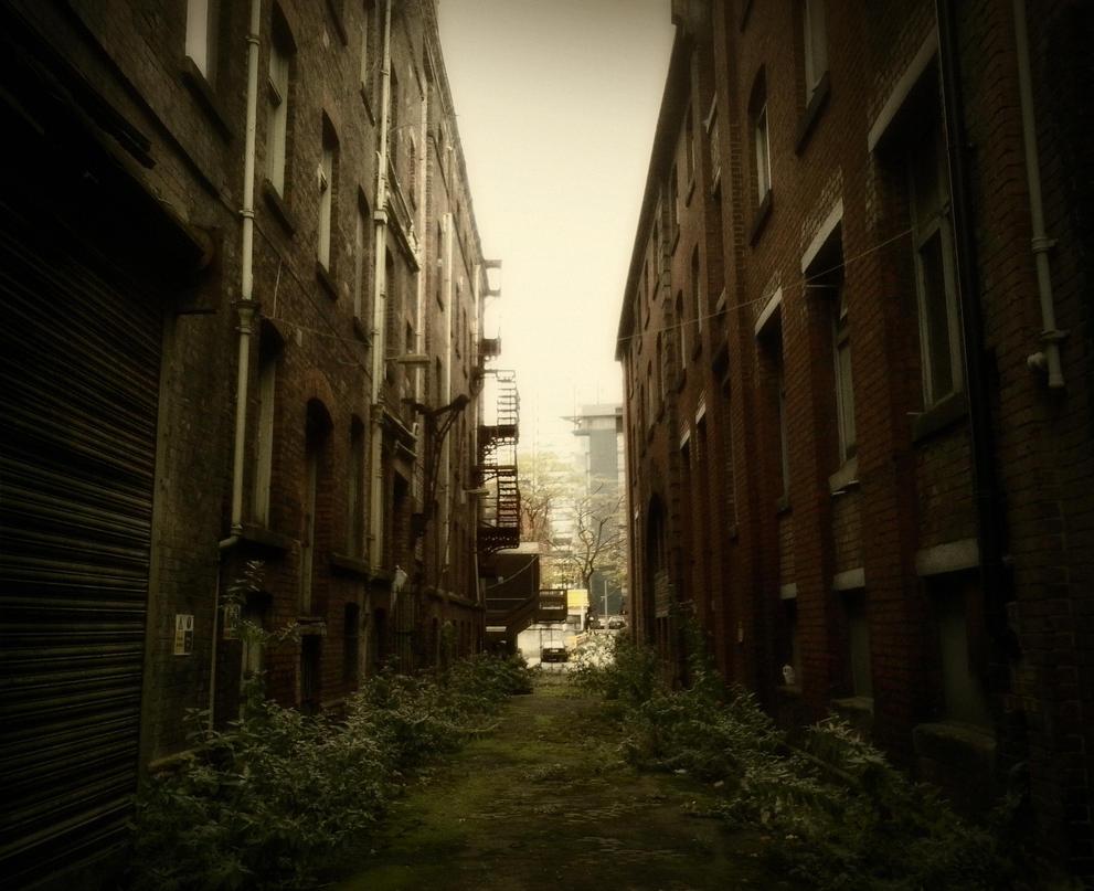 little david street by caithuniverse