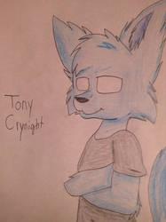 Gift for TonyCrynight by Funtimefox259