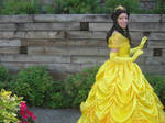 Belle's Ballgown from Beauty and the Beast