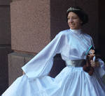 Disney Princessified Leia