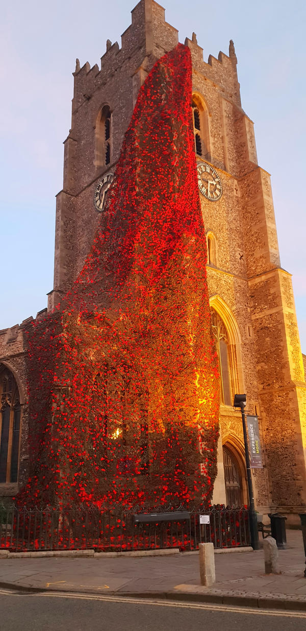 Poppies  on church - Remembrance