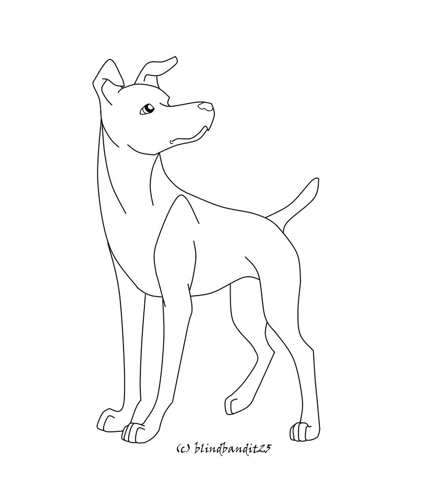 Red fox coloring pages realistic coloring pages for Template of a fox