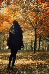 Autumn walk by SandyManase