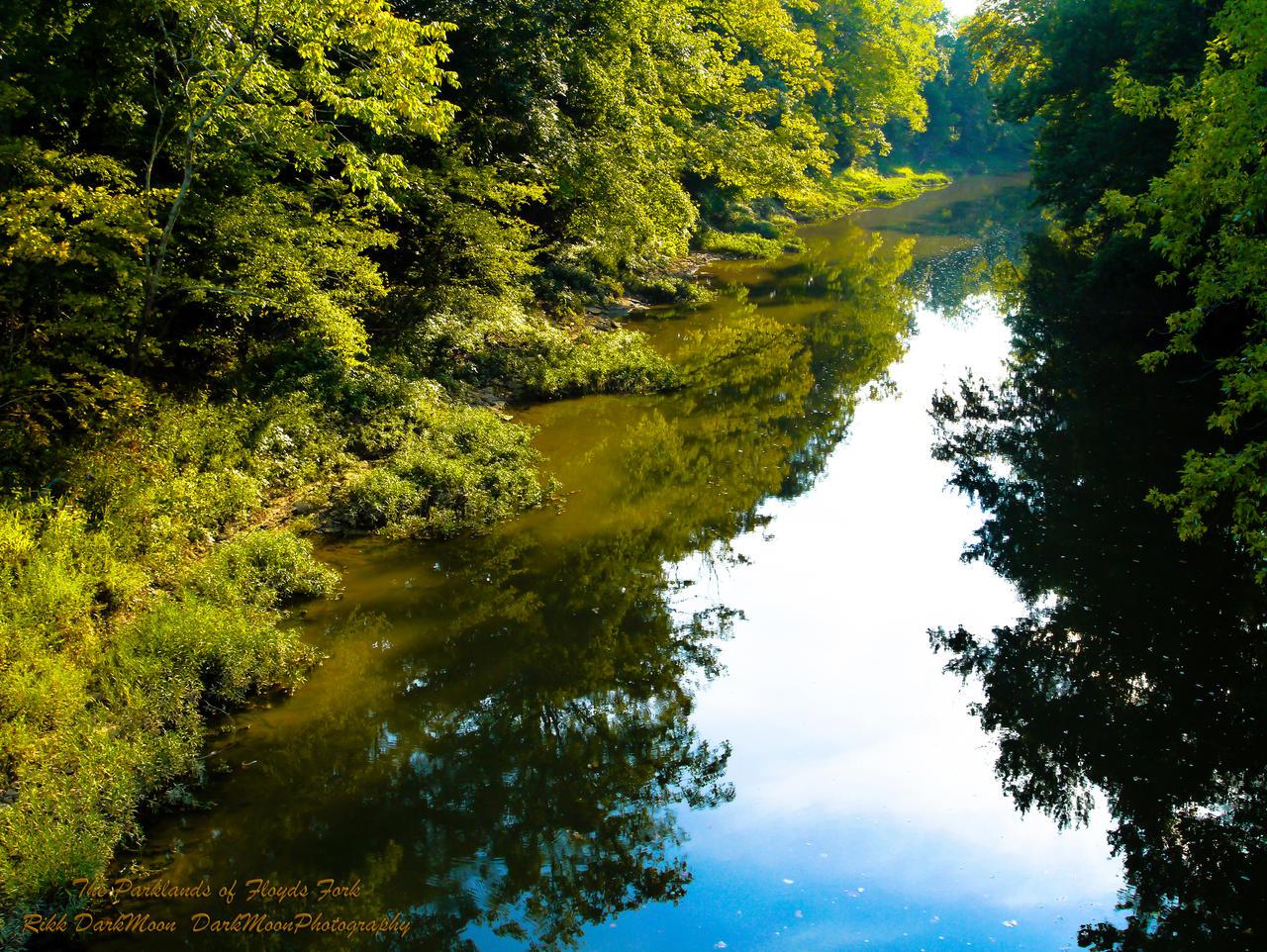 00-TheParklandsofFloydsFork-P1010363-2-WP-Mast by darkmoonphoto