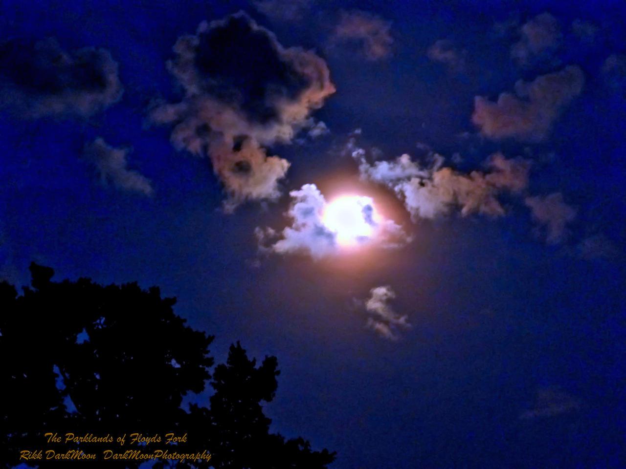 00-ParklandsOfFloydsFork-FullMoon-P1010278-WP- by darkmoonphoto