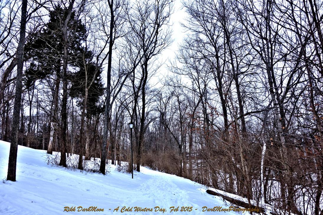 00-Winter-Feb-2015-DSC01025-HDR-WP-Master by darkmoonphoto