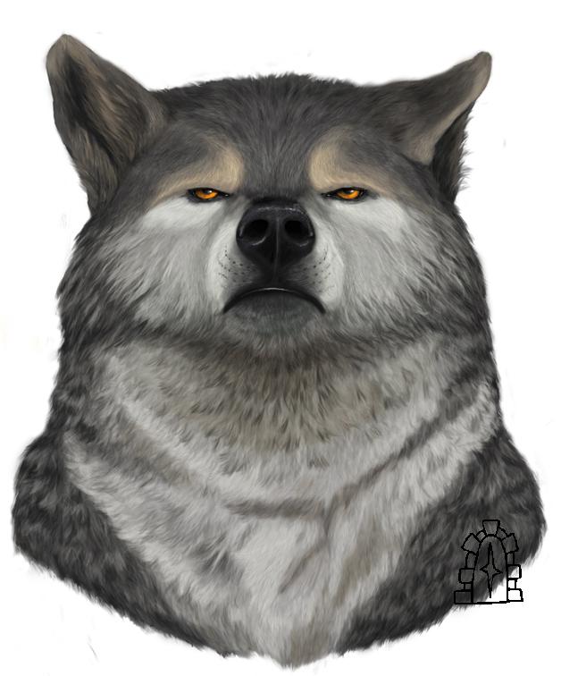 The gloomy wolf by Pobrodiaga