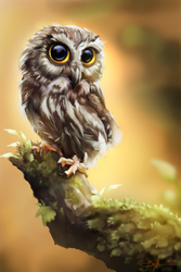 Owl by RebelRacoons