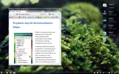 Windows 7: Winter desktop