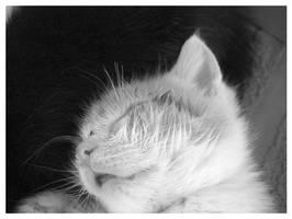 Little Sleepyhead by sugabear