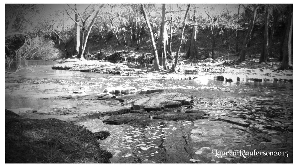 Aucilla River BW by sugabear