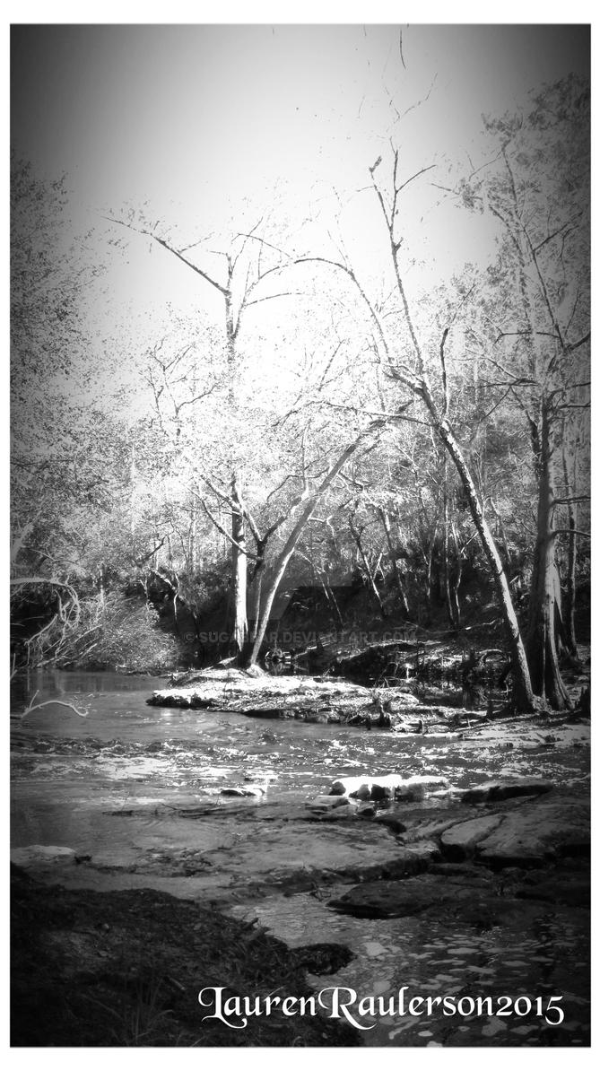 Aucilla River BW 2 by sugabear