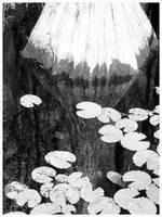 -Black-White-Untitled- by sugabear