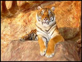 Eye Of The Tiger by sugabear