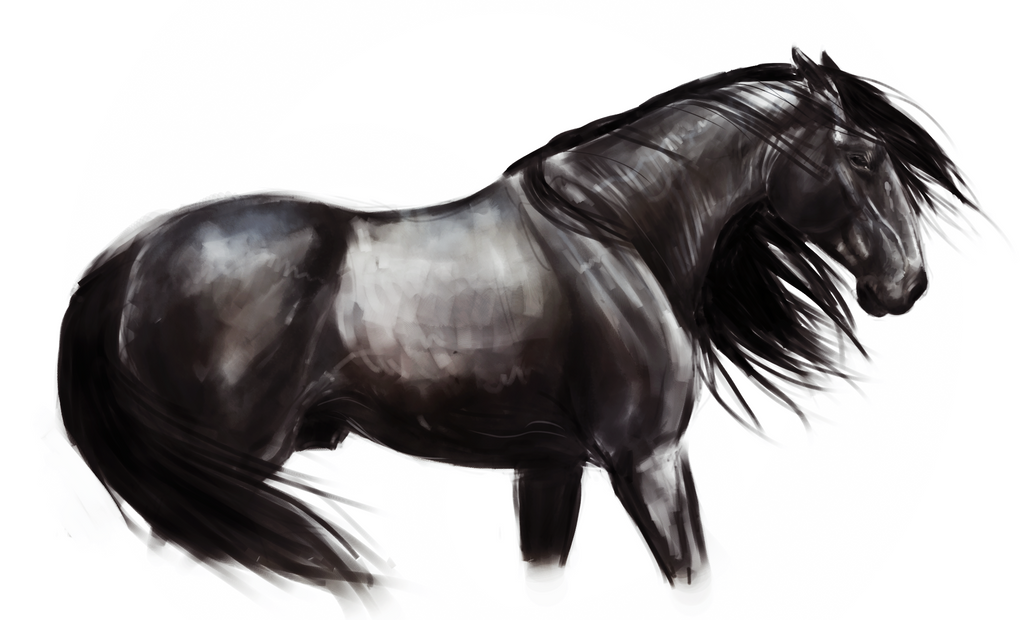 Coloring Pages Of Horses On Black Background
