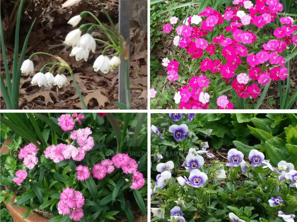 Flower Group 1 by Coro-Yuki