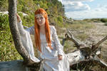 Elven song by causless