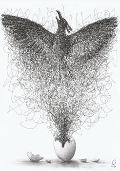 Bird's Birth