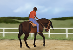Raposa EquiBREAK | On the Bend