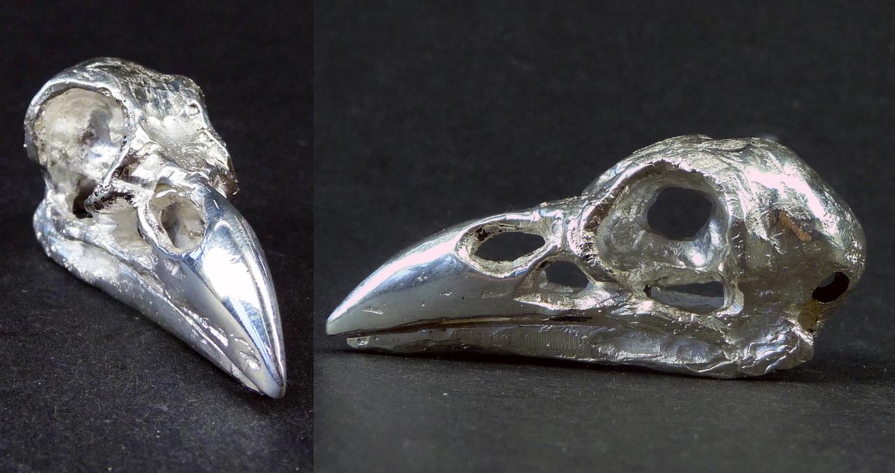 Raven Skull Art