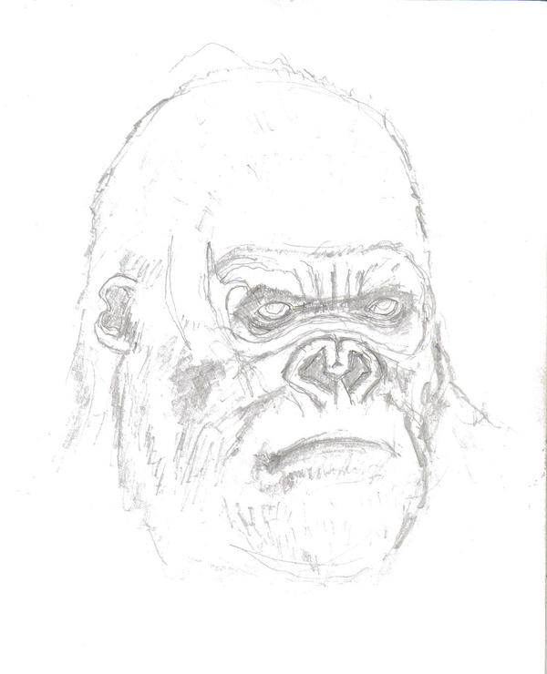 King Kong Head Portrait By Mmawolf On Deviantart Kong Coloring Page