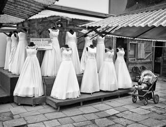 Twelve Brides One Baby by sandas04