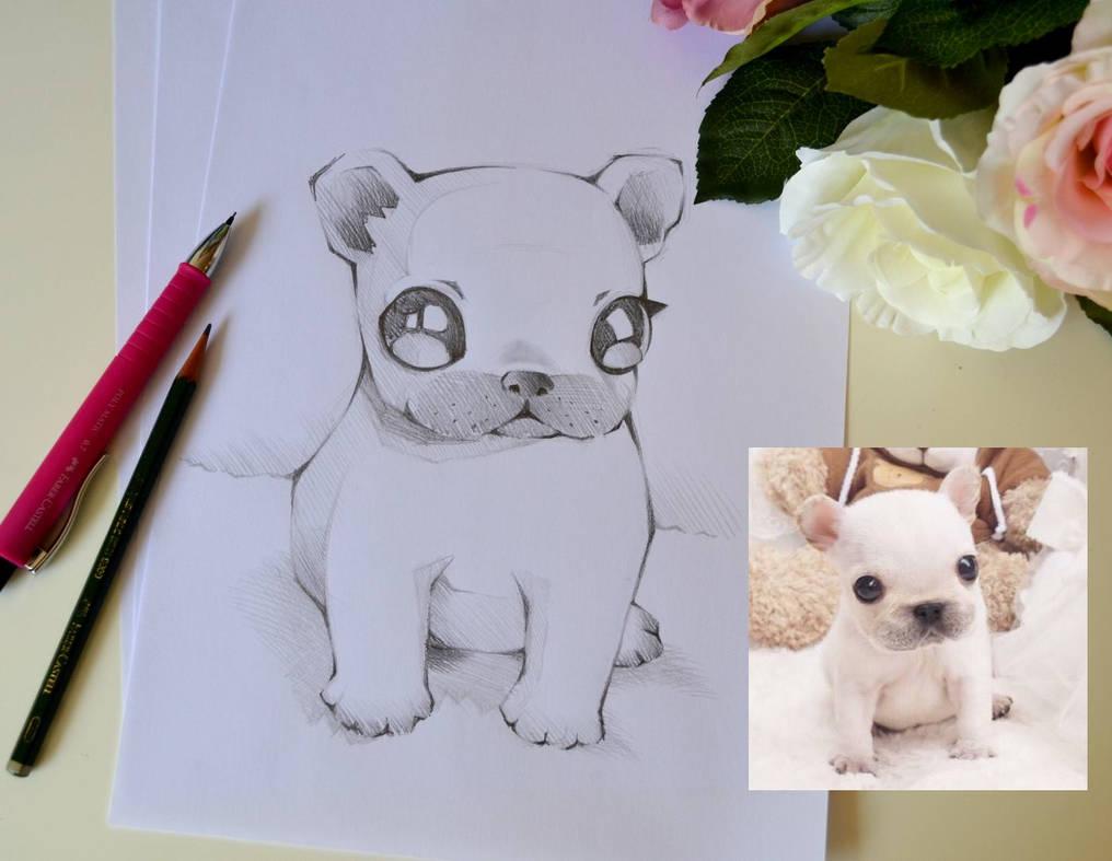 Cute French Bulldog by Lighane