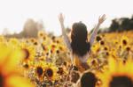 sunflowers I by AzureFantoccini