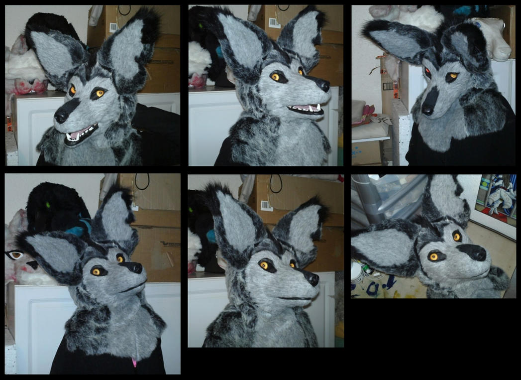 Jackal Mask (base assembly and furring service) by CuriousCreatures