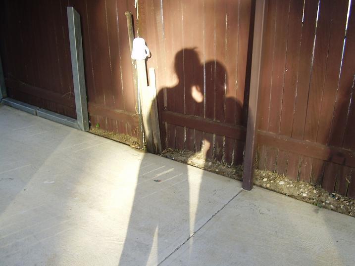 Shadows by TyraMcKinnon