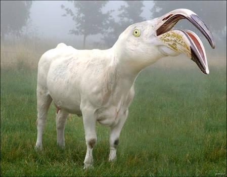 flamingmoo