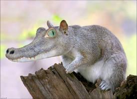 squiridile by imamon