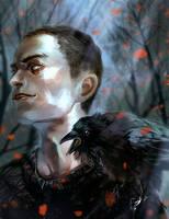 Ronan by VivienKa