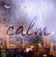 rain outside, calm inside