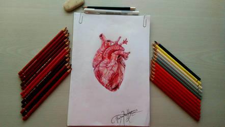 Heart by RuxandraHuzum