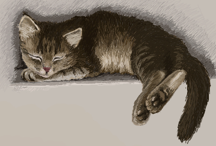 Sleeping kitten by HengenVaara