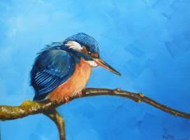 Kingfisher by Darko-Stojanovic-Art