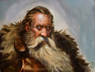 Dwarf lord by Darko-Stojanovic-Art