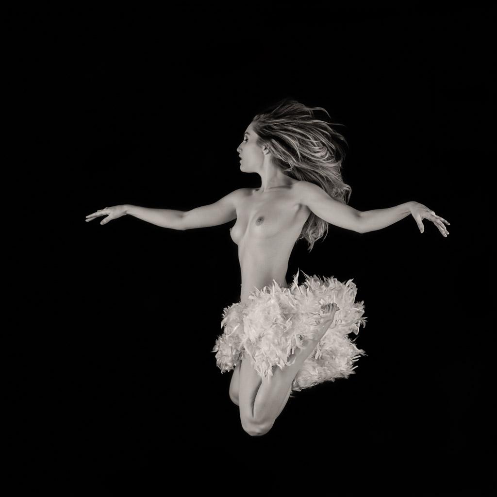 Swan in Flight by Fox2006
