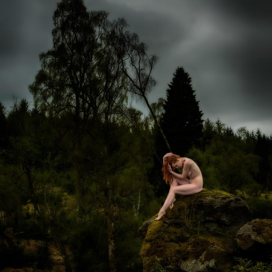 Dark Forest by Fox2006
