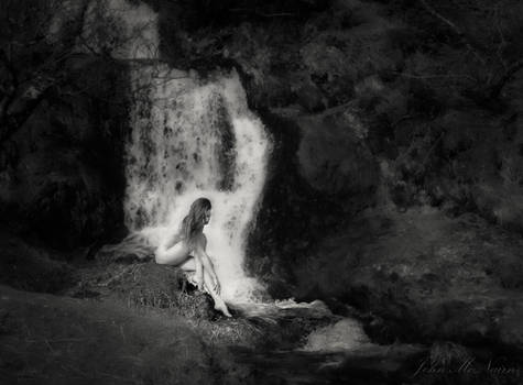 The Waterfall and The Rose