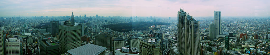 Panoramic Tokyo by Stormwatch64