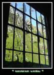 sanatorium window