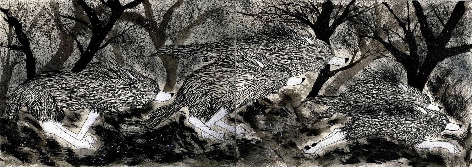 O lobo solitario pagina 12 by LuizEvaristo